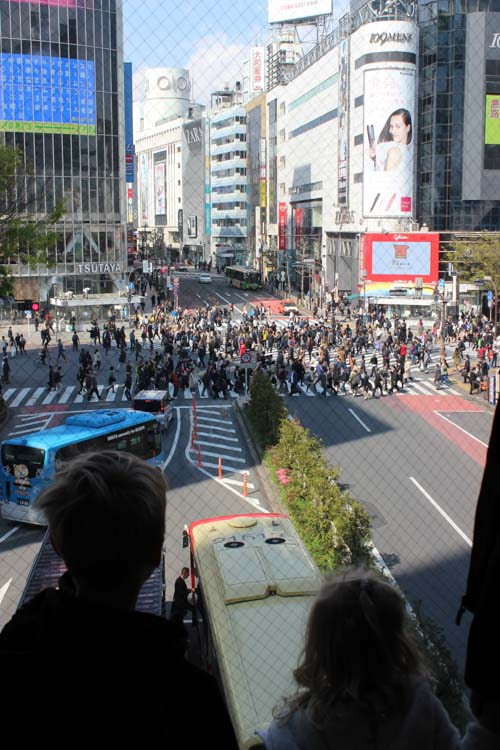 Shibuya Barndance. The busiest cross-walk in the world. Japan holiday toddler itinerary.