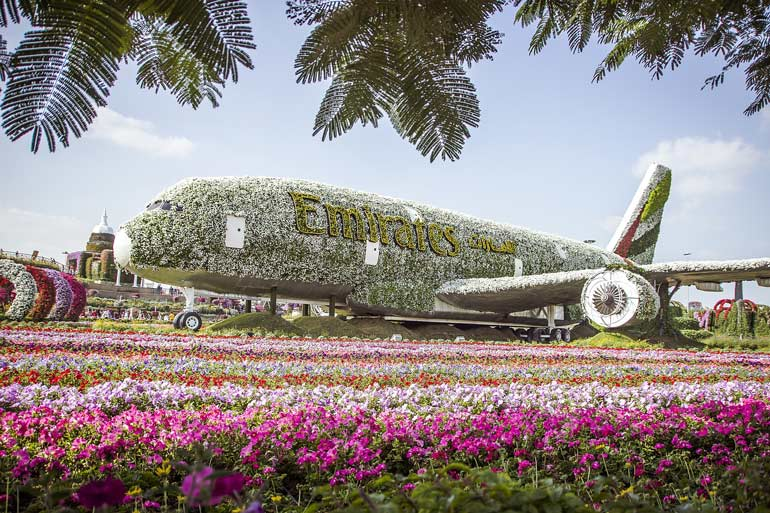 Airbus A380 at Miracle Gardens Dubai