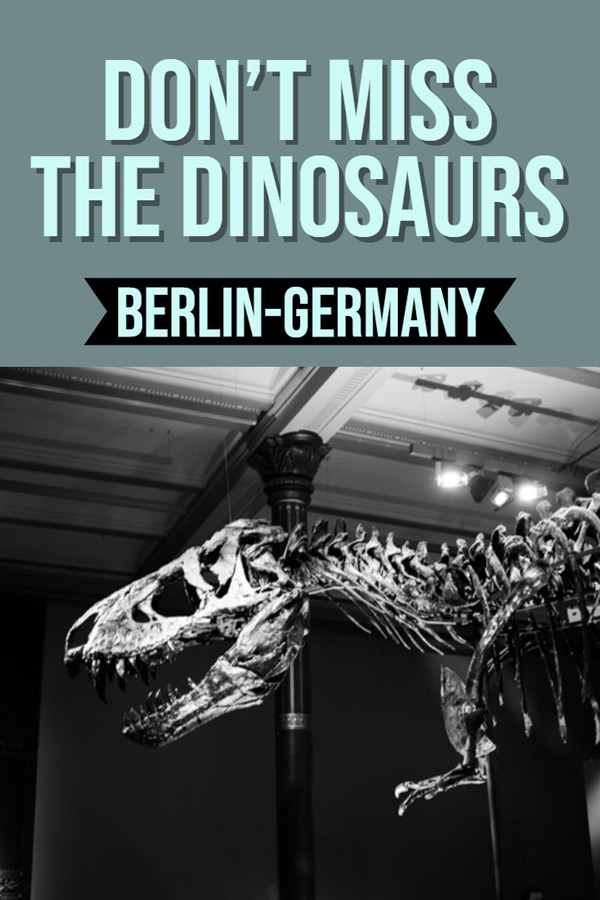 Do you have a dinosaur loving child? Planning a trip to Berlin and looking for fun activities with kids? Then head to the Berlin Natural History Museum not only is there a fantastic dinosaur display you can also learn about space, the animal kingdom and more. Read the post to find out all about it. #Berlin #Germany #Familytravel #Museum