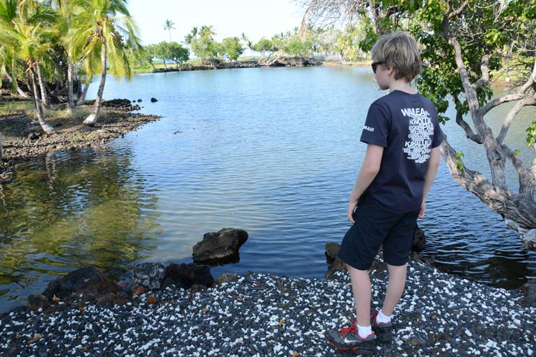 Visiting Fishponds in Big Island Hawaii with kids