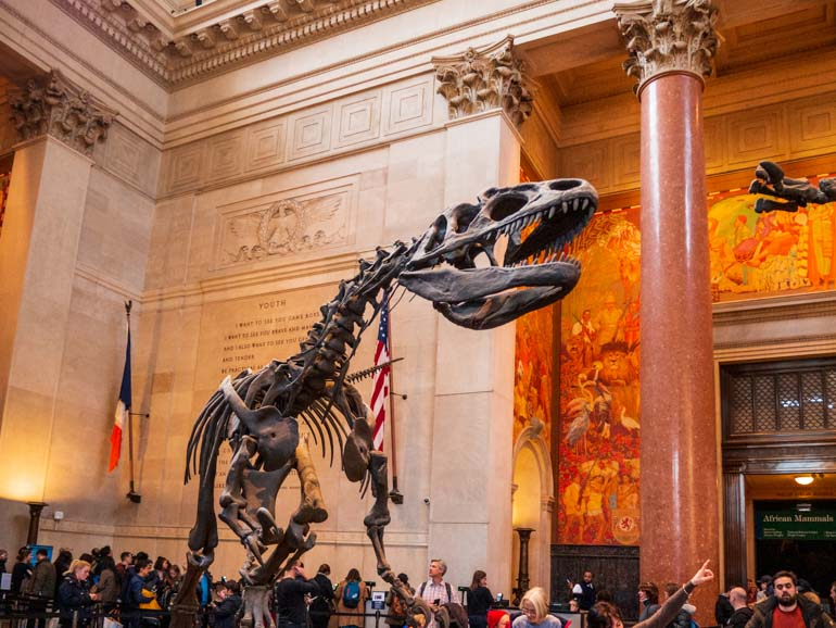 Dinosaur in the foyer at the American Museum of Natural History a great place to start on your visit with kids