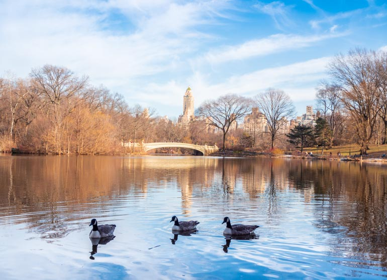 The lake at central park visiting on a 4 days in New York Itinerary
